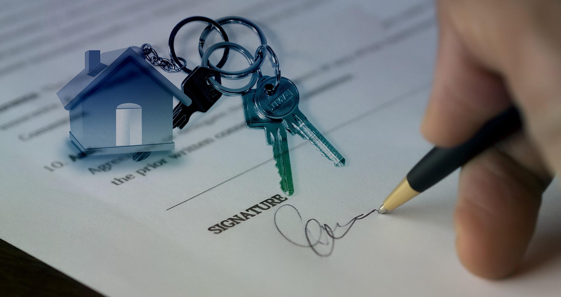 Estate Agency Display Tips