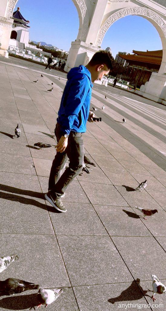 Pigeons at Chiang Kai Shek Memorial Hall